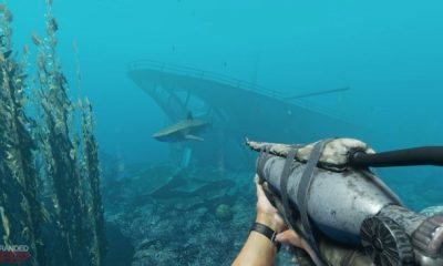 Stranded deep launch