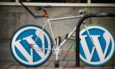 Important WordPress Tips You Need to Know