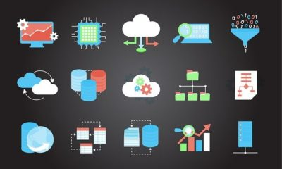 Web Hosting and a Domain Name Can Impact SEO